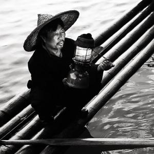 Caught the light by Michele Usher — Projim WINNER